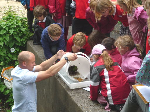 Invertebrate demonstration